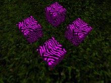 DD Purple Zebra Boxes